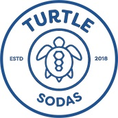 Turtle Logo Website